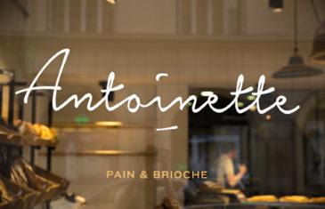 Antoinette pain et brioche, vitrophanie, adhésif, sticker sur vitrine extérieur, blanc et doré, studio frvr.