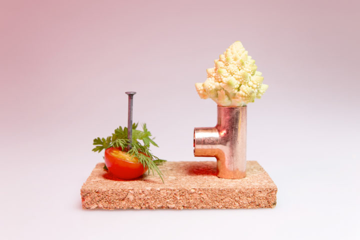 photo shooting culinaire workshop liège cuivre clou choux romanesco tomate par le studio frvr