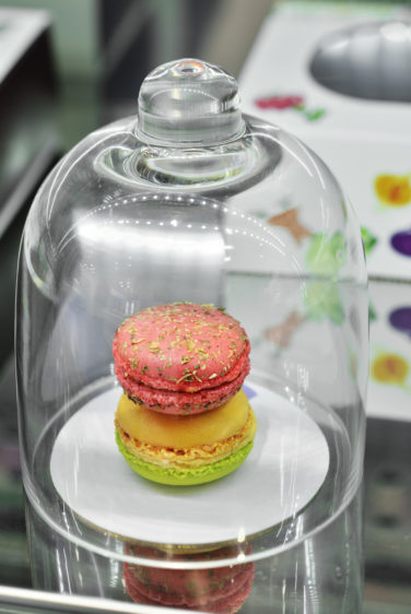 boutique macarons gourmands macaron sous cloche conception studio frvr
